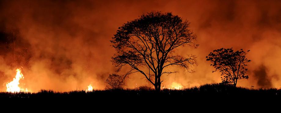 Bushfires at night