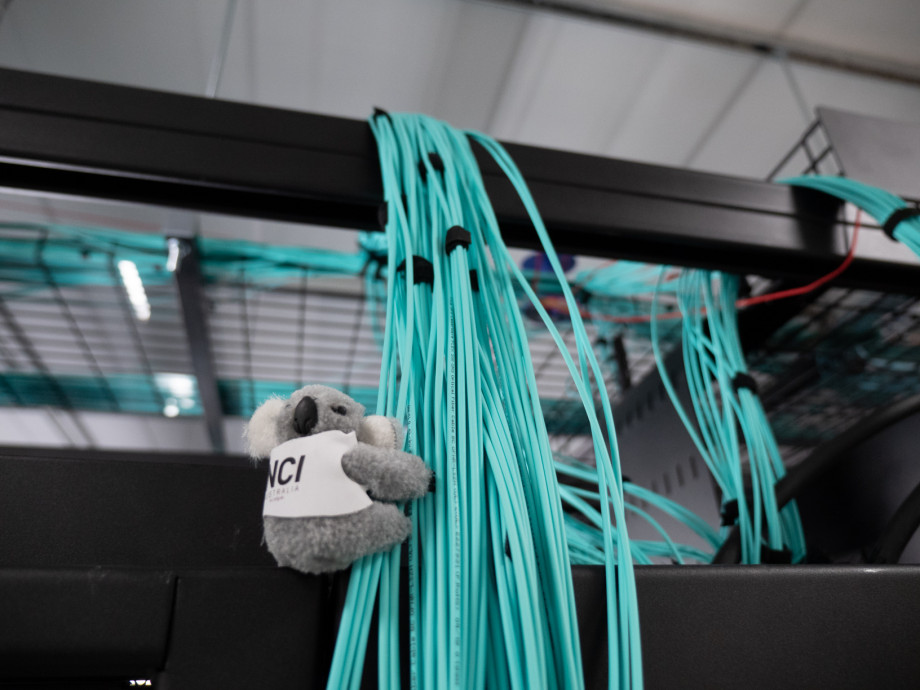 A koala toy is attached to a large bundle of thin blue cables stretching down from above.