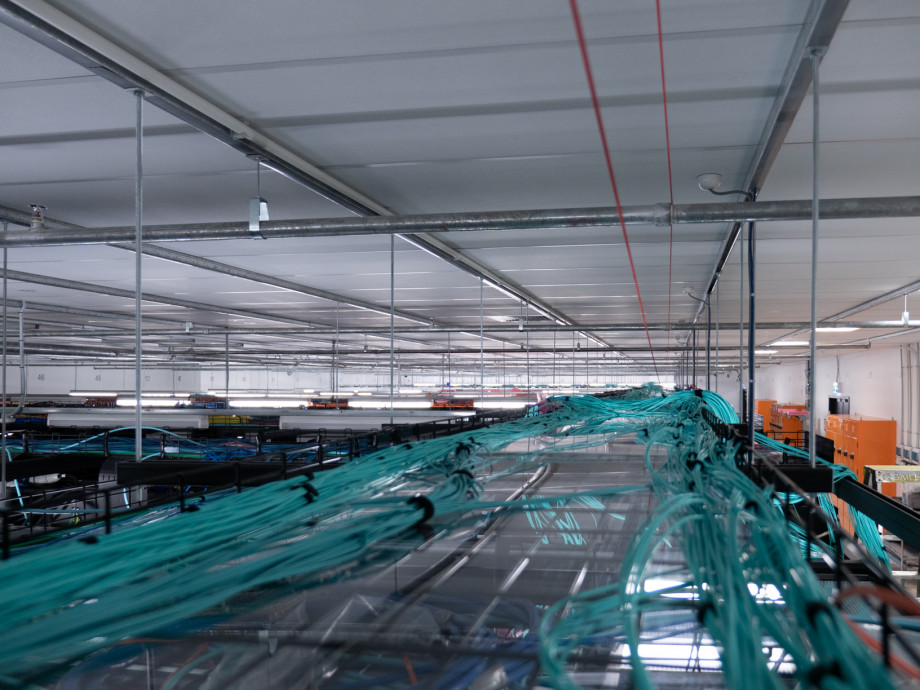 Dozens of thin blue-green cables in bundles stretch out into the distance across the length of the data hall.