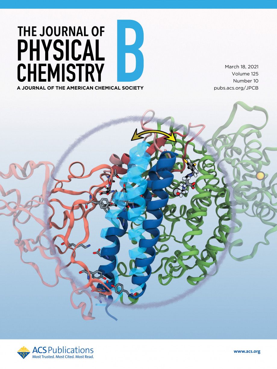 The cover of the Journal of Physical Chemistry B featuring the interaction of proteins vital to the binding of COVID-19 to human cells.