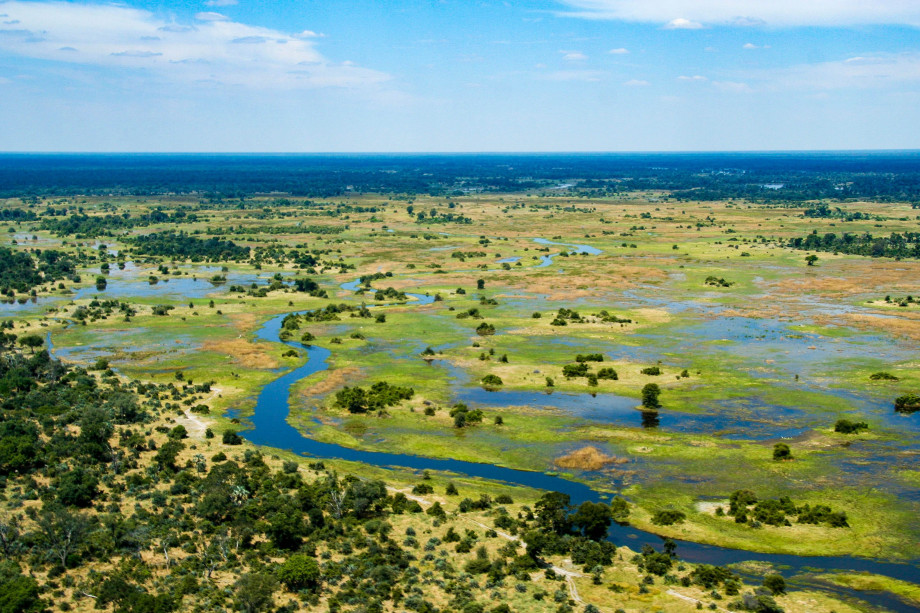 Rivers and lakes form a wetland wth green vegetation going off into the distance of Botswana's Okavango Delta.