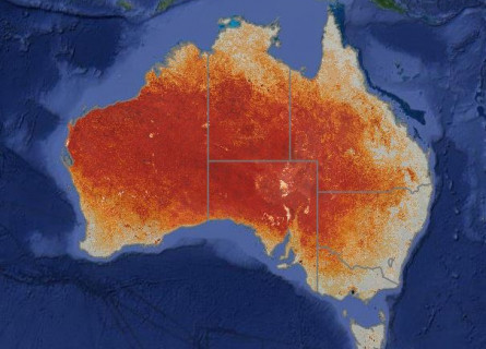 Exposed soil on the Australian continent in 2016, as shown by Australia's Environment Observer.