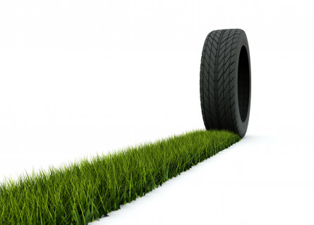 A strip of grass leads to an upright tyre.