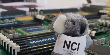 A koala soft toy wearing an NCI jacket sits on top of an open computer server for display.